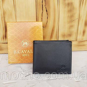 Мужской итальянский кожаный качественный кошелёк B.Cavalli