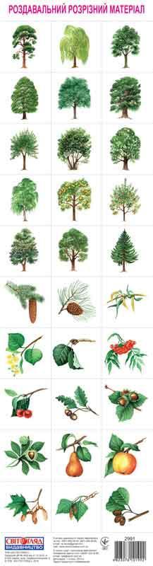 Розрізний матеріал. Дерева 4823076101992