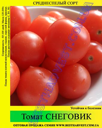 Семена томата Снеговик 0,5кг, фото 2