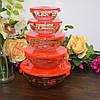 """Набор ёмкостей с крышкой для пищевых продуктов """"Red roses"""" (120,220,360,480,840 мл.)"""
