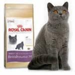 Роял Канин Бритиш 10кг, сухой корм для британских и шотландских вислоухих кошек/доставка
