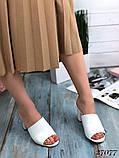 Женские шлепанцы сабо на каблуке, эко кожа, в расцветках, фото 4