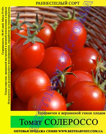 Семена томата Солероссо 0,5кг, фото 2