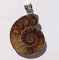 Кулон украшение из камня Аммонит