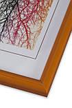 Рамка 35х35 из пластика - Оранжевая - со стеклом, фото 2