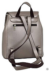 Женский рюкзак экокожа Case 608 серебряная бронза, фото 3