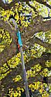 Пила садовая Gardena 300PP для комбиситемы, фото 4