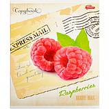 Тетрадь цветная 60 листов, клетка «ЯГОДЫ» / зошит 60 аркушів в клітинку, фото 4