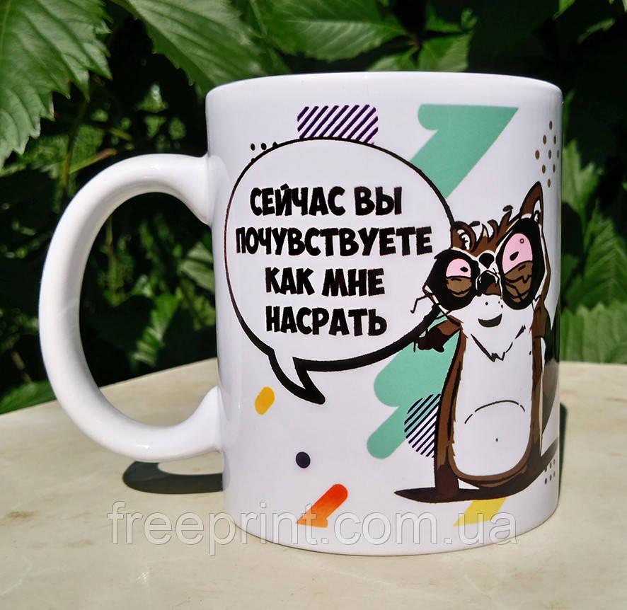 "Чашка-прикол ""Енот - запах безразличия"". Подарочная чашка-сувенир18+"