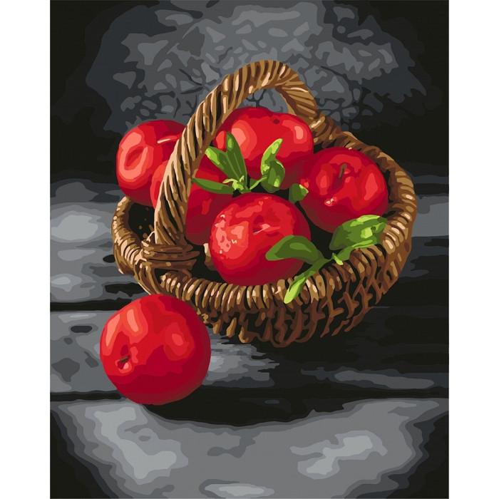 Картина по номерам Яркие витамины  40*50 КОРОБКА  арт. КН5585