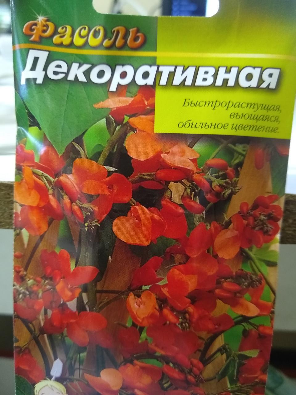 Насіння квасоля декоративна швидкоросла кучерява, рясне цвітіння 5 насінин