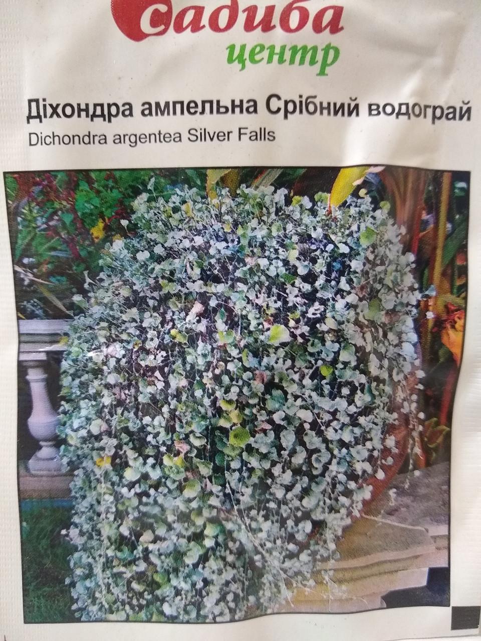 Насіння Діхондри ампельної Срібний водограй для балконів посухостійка 3 шт насіння, Голландія