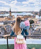 Картина по номерам Взгляд на город, 40x50 см, Brushme (Брашми) (GX29260)