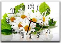 Подарочные белые часы картина настенные для кухни Ромашечки 30х45 см