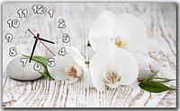 Декоративные интерьерные светло-серые часы на стену для кухни  Чувственные орхидеи 30х50 см