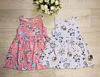 Платье для девочек оптом, S&D, 1-5 лет,  № FF32, фото 1