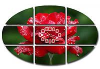 Необычная зеленая модульная картина с часами полиптих, для гостиной  Красная роза, 136х90 см