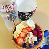 Stellar Rose Beauty Water (500 Мл) органіка для пиття і вмивання, фото 3
