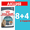 Корм Роял Канин хэйрболл кэа Royal Canin Hairball care шерстевыводящий для кошек 85 г(8+4)
