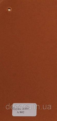 Рулонні штори Міні А800 802 40см., фото 2