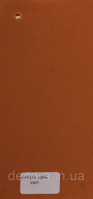 Рулонні штори Міні А800 803 40см.