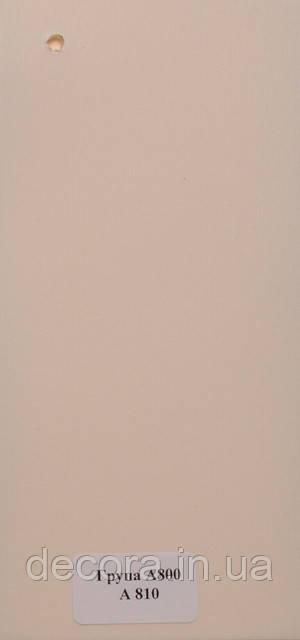 Рулонні штори Міні А800 810 40см.