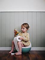 Как ребёнка приучить к горшку?