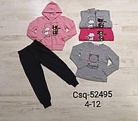 Спортивный костюм тройка для девочек Seagull 4-12 лет