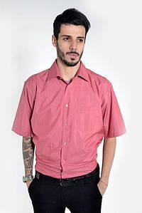 Рубашка 892-3 цвет Темно-розовый