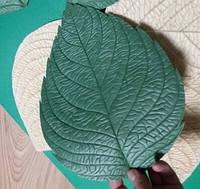 """Молд """"Реалистичный лист"""" Большой 30х21 см для ростовых цветов"""