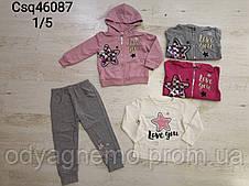 Трикотажный костюм-тройка для девочек Seagull оптом, 1-5 лет. Артикул: CSQ46087