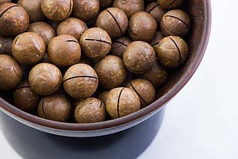 Орех макадамия неочищенный сырой (70 грамм)