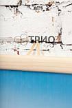 Обогреватель-картина инфракрасный настенный ТРИО 400W 100 х 57 см, камин 3D, фото 5