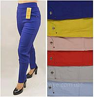 Женские летние яркие брюки с пчелой стрейч в больших размерах 2XL\3XL,3XL\4XL,4XL\5XL хлопок 35%