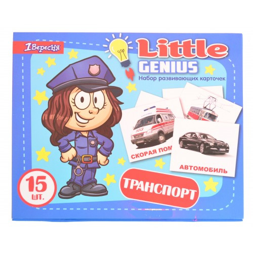 Набор детских карточек Домана Транспорт, в наборе 15 штук РУС