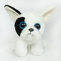 Мягкая игрушка Золушка собака бульдог Чаппи 24 см Белый 284, КОД: 1463712