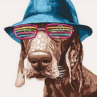 """Акриловая картина по номерам на холсте жывотные собака """"Стиляга"""" 40х40, 3 уровень сложности"""