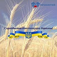 С праздником Конституции Украины!