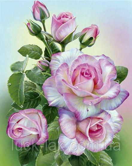 Алмазная вышивка нежные розы 30х40 см, полная выкладка