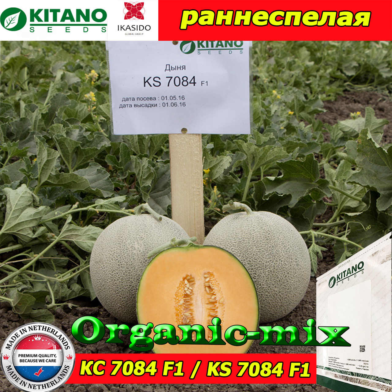 Семена, дыня КС 7084 F1 / KS 7084 (раннеспелая), 100 семян ТМ Kitano Seeds (Нидерланды)