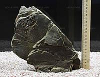 Карпатский камень 32 (2.6kg)