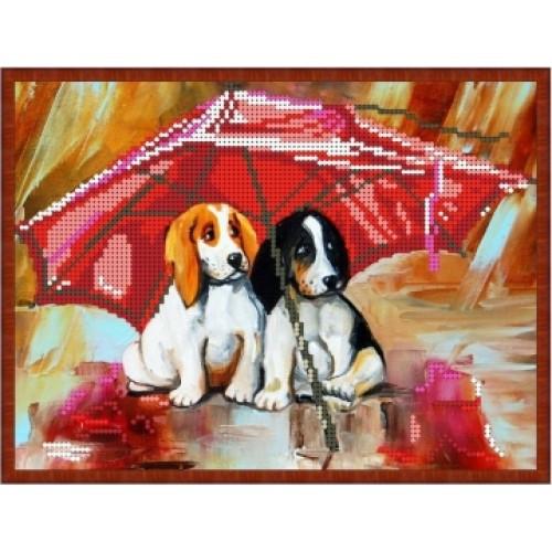 Вышивка схемы бисером, Канва щенки животные Собачки под зонтом