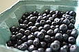 Органический порошок из ягод аронии Diet Food 200 г, фото 2