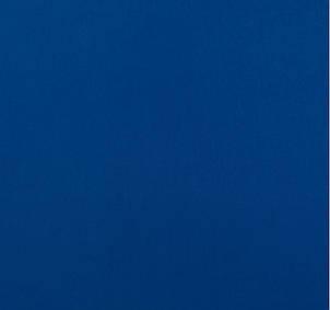 Футер трехнитка Penye на флисе, Синий Электрик, с начесом, купить оптом, Украина, фото 2