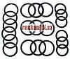 Набор РТИ колец уплотнения фланцев Р-100    (арт.210)