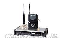 Радиосистема DV audio BGX-124