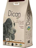 Корм для собак Dican Up Complete Recipe (індичка/кальмар/овочі) Для собак середньої активності 4 кг.