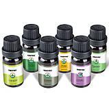 KBAYBO ефірні олії для ароматерапії, аромат лаванди, чайного дерева, розмарину, лимонника, апельсина, м'ята, фото 4