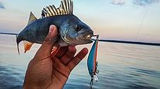 Твичинг лур рыболовная снасть USB Twitching Fishing Lure приманка + монопод, фото 2