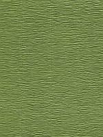 Бумага гофрированная (креп) Cartotecnica Rossi - Оливковая, размер 25x30 см